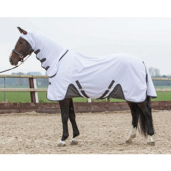Goedkope paarden en pony ✅ Paarden Zomerdeken, eczeemdeken