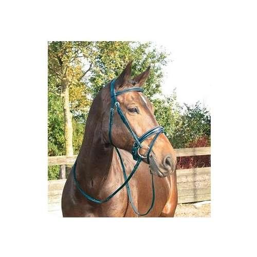 Goedkope paarden en pony ✅ Hoofdstellen Hoofdstellen