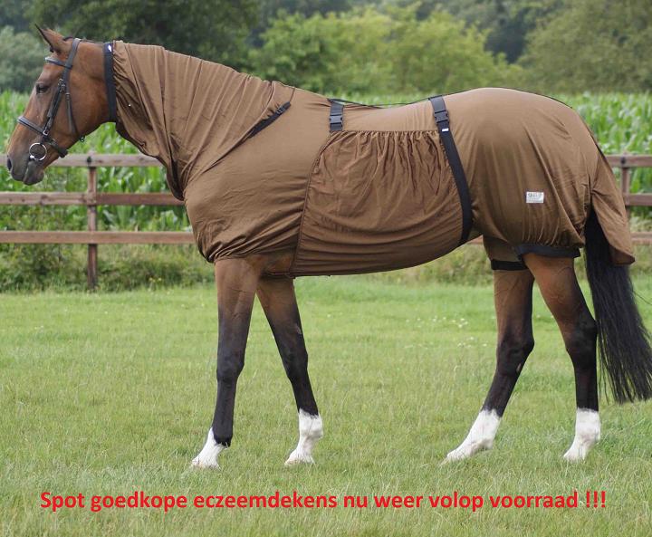 Paarden eczeemdekens aanbieding