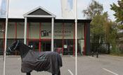 Ruitersport Hoogeveen